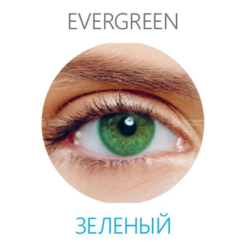 Gelflex Sofclear Enchance with BioMoist (2 линзы) (8.6 -0.50   Evergreen )